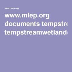 www.mlep.org documents tempstreamwetlandcross.pdf