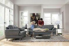 photos de salons modernes et canapé en cuir gris