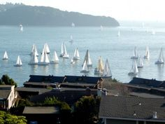 Rent a fabulous view home in Tiburon! Opera House, San Francisco, Vacation, Luxury, Building, Travel, Vacations, Viajes, Buildings