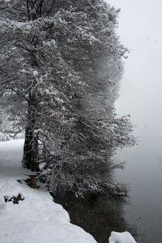 neve stazioni sciistiche lombardy italy - photo#37