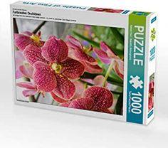 Puzzle Orchidee Puzzles, Puzzle 1000, Pictures, Orchids, Legends, Colors, Puzzle