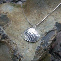 Silver shell pendant - Perfect   #EyekoPerfectSummer Shell Pendant, Pendant Necklace, Shells, Colours, Sea, Summer, Jewelry, Conch Shells, Summer Time