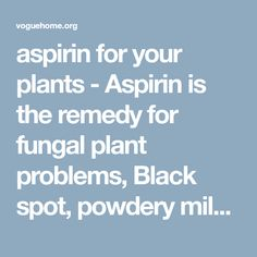 aspirin for your plants - Aspirin is the remedy for fungal plant problems, Black spot, powdery mildew, and rust are a terrible trio of fungi, which can attack and destroy your plants. Scientists have found that two uncoated aspirin tablets (325 milligrams each) dissolved in 1 quart of water and used as a foliar spray can thwart these diseases... 35 Pest, Disease and Weed Remedies-green and safe - voguehome.org
