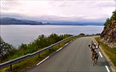 Amazing Street View shot. Norway.
