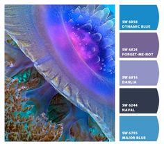 9 Best Meditation Room Colors Images Colors Meditation Space Rocks