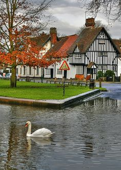 Swan at the Ford at Eynsford village, Kent, England England Ireland, Kent England, England And Scotland, Tudor, Places In England, English Village, British Countryside, Kingdom Of Great Britain, British Isles