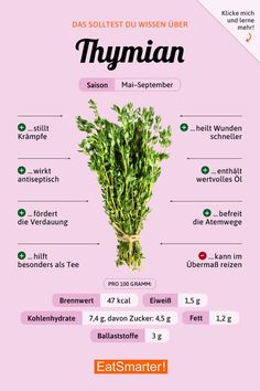 You should know about thyme eatsmarter.de # herbs # nutrition You should know about thyme eatsmarter. Nutrition Guide, Nutrition Plans, Diet And Nutrition, Cheese Nutrition, Complete Nutrition, Nutrition Shakes, Natural Yogurt, Healthy Diet Plans, Wellness