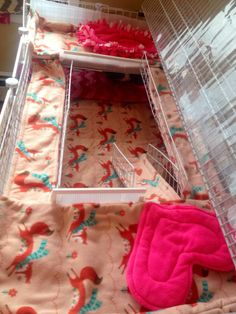 Diy Guinea Pig Cage, Guinea Pig House, Pet Guinea Pigs, Guinea Pig Care, Hedgehog Cage, Hedgehog Pet, Pet Rat Cages, Guinnea Pig, C&c Cage