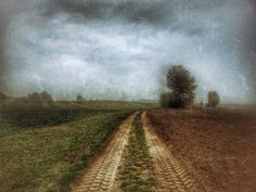 Between Two Worlds  #road #nature #landscape