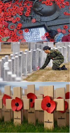 Collection of Remembrance Day Articles | Jenn's Random Scraps