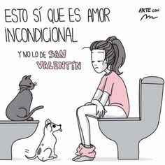 Trendy Ideas for memes de amor de perros New Memes, Funny Memes, Hilarious, Valentines Day Memes, Amor Animal, Single Humor, Girlfriend Humor, Friend Memes, Relationship Memes