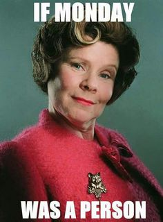 I hate Mondays almost as much as I hate Dolores Umbridge! (Try Not To Laugh Harry Potter) Harry Potter World, Harry Potter Universe, Harry Potter Jokes, Harry Potter Characters, Harry Potter Fandom, Harry Potter Character Quiz, Hogwarts, Ridiculous Harry Potter, Delores Umbridge
