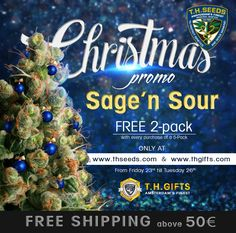 Christmas is almost here and we would like to share our spirit with you. With EVERY purchase of a 5-Pack we will throw in a FREE 2-Pack of feminized SAGE'N SOUR.  This promotion is a limited time only and it starts TODAY, Friday the 23rd till Tuesday 26th. With free 2-pack of Sage'n Sour you will also receive an additional FREE 2-pack of Bubblegum if you purchase any 5-pack or Mind Control Box set! www.thseeds.com www.thgifts.com