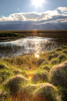 https://flic.kr/p/miCG4i | Iceland | Just some elements I find always interesting like the gras, water, reflections, sunflares and sunrays peeking through those clouds. A summer image with the uncertainty on what comes next.