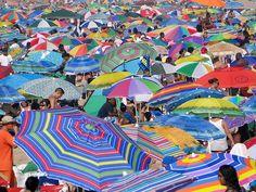 Crowded beach umbrellas