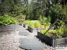 köksträdgård,odlingslådor,pallkragar,skiffer,armeringsjärn