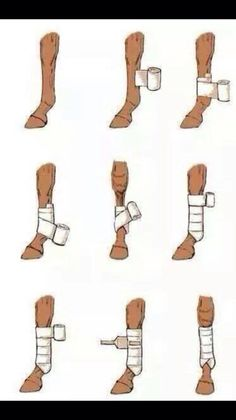 Very useful if you dont use bandages in every day care