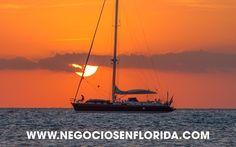 Tomorrow at 8pm - Venda su Negocio en Florida