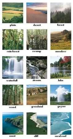 die Umwelt Environment - German for all Deutsch für alle English Vocabulary Words, Learn English Words, English Study, English Lessons, English Grammar, German Language Learning, Teaching English, Foreign Language, French Language
