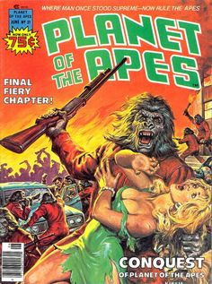 Planet Of The Apes #21, 1976, cover by Earl Norem