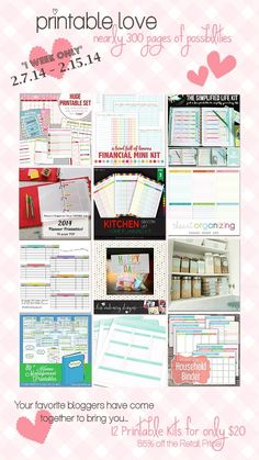 Huge bundle of home management printables on sale now...nearly 300 printables for $20!!  For a limited time only at I'm an Organizing Junkie