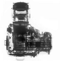 Nikon E-series x-ray photo - NikonWeb.com