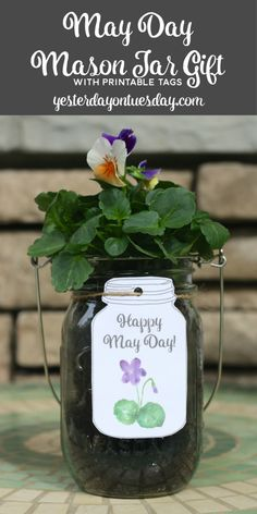 May Day Mason Jar Gift and free watercolor May Day  tag printables: An easy and thoughtful May Day gift for neighbors and friends.