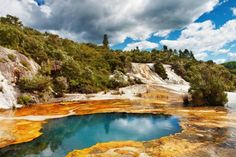 Hot Spring of Rotorua