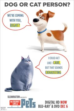 It doesn't matter if you're a cat or dog person, THE SECRET LIFE OF PETS is full of laughs for all animal-lovers. Own it on Blu-ray & DVD Dec 6.