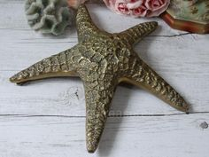 Vintage Brass Starfish 26cm Nautical Star Fish Wall Hang OR Bench TOP Display | eBay Nautical Star, Seaside Beach, Collectible Figurines, Coastal Homes, Starfish, Bench, Brass, Display, Wall