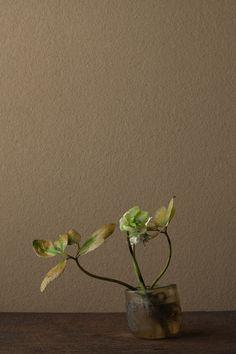 2012年4月27日(金) 名残の春の絶唱。 花=クリスマスローズ 器=ローマングラス碗(ローマ時代,罗马帝国 27 BC.~395 AD.)川瀬敏郎 Toshiro Kawase / beautiful example of ikebana by Japanese artist Toshiro Kawase #wabisabi