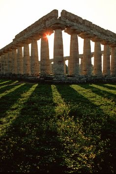 Early Greek Temple Paestum, Italy. Here can be found the temples of Hera, Poseidon, and Athena.