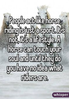 Totally... it's not just riding... it's a bond. So many people want to ride just to ride and I have found those people aren't very good at riding.., they don't understand the true reason for riding. To live to feel and to love. To have a partnership with another being there are no lines drawn just you and your partner.