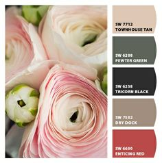 Paint Colors From Chip It By Sherwin Williams Tiki Hut Autumn Inspiration