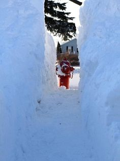 having to dig out the fire hydrants- scary deep snow