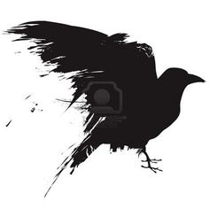 Google Image Result for http://us.123rf.com/400wm/400/400/lhfgraphics/lhfgraphics0904/lhfgraphics090400073/4695210-vector-illustration-of-the-silhouette-of-a-raven-in-grunge-style.jpg