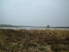 4 km - Het Hijkerveld (9 foto's)