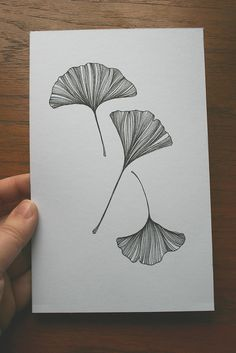 Drawing Sketches, Art Drawings, Plakat Design, Zen Art, Zentangle Patterns, Botanical Illustration, Doodle Art, Art Inspo, Artsy