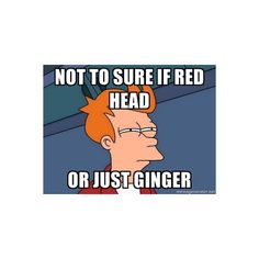 Not to sure if red head Or just Ginger - Futurama Fry | Meme Generator ❤ liked on Polyvore