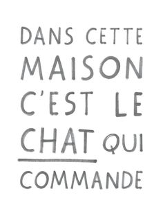 Best Typography Quotes Poster Cat Manifesto by audreyjeanneshop French Words, French Quotes, Words Quotes, Me Quotes, Albert Schweitzer, Cat Jokes, Quote Citation, Image Fun, Messages