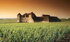 castillo de Vougeot. Borgoña , Francia