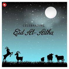 Eid ul Adha Images, Bakra Eid Images, Eid ul Adha Wishes Images, Eid ul Adha Mubarak Images Eid Mubarak 2017, Eid Mubarak Hd Images, Eid Ul Adha Images, Eid Mubarak Status, Eid Images, Adha Mubarak, Happy Eid Mubarak, Pictures Images, Adha Card