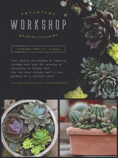 FREE Succulent Workshop: Gardens and Wreaths. Click the image above to register online or call 419.865.6566