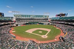 Looking For A Hotel Near Oakland Coliseum Comfort Inn And Suites Airport Is Located Just Over Mile Away