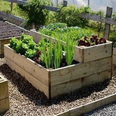 Excellent Raised Vegetable beds are simple to make and easy to maintain; use this method and you can achieve a productive vegetable plot where heavy digging becomes a thing of the past. Description from quickcrop.co.uk. I searched for this on bing.com/images The post Raise ..