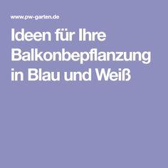 Ideen für Ihre Balkonbepflanzung in Blau und Weiß