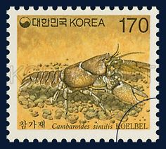 Definitive Postage Stamps, cambaroides similis, marine life, red clay, 1997 9 1, 보통우표, 1997년9월1일, 1913, 참가재 postage 우표