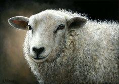 Sold | Sheep Mieke III, oil/canvas 10 x 14 inch (25 x 35 cm) © 2012 Klimas