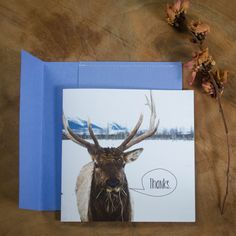 Silly Speech-Bubble Elk 'Thanks' Square Card with Handmade Envelope!