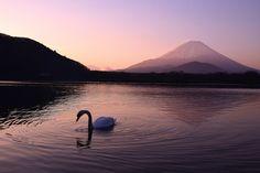 Photo by hiromi sakata Fuji, Mount Rainier, Land Scape, Magick, Beautiful Places, Japan, Mountains, World, Nature